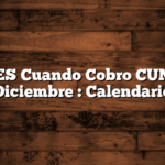 ANSES Cuando Cobro CUNA en Diciembre  : Calendario
