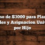 Bono de $3000 para Planes Sociales y Asignacion Universal por Hijo