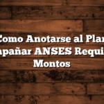 Como Anotarse al Plan Acompañar ANSES  Requisitos, Montos