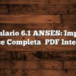 Formulario 6.1 ANSES: Imprimir  Como se Completa   PDF Interactivo