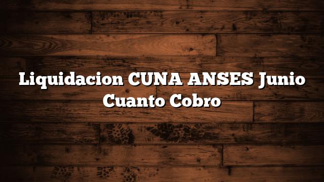Liquidacion CUNA ANSES Junio   Cuanto Cobro