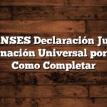 MI ANSES Declaración Jurada Asignación Universal por Hijo  Como Completar
