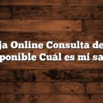 Naranja Online Consulta de Saldo Disponible  Cuál es mi saldo