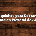 Requisitos para Cobrar la Asignacion Prenatal de ANSES